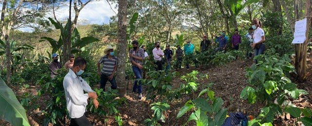 Coffee & Climate Farmer Aid Initiative